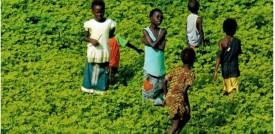 Bambini in Senegal